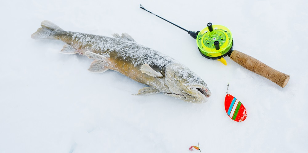 рыбалка в финляндии сетью