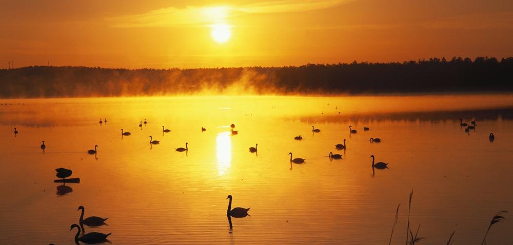 Лапландия летом, Полуночное солнце