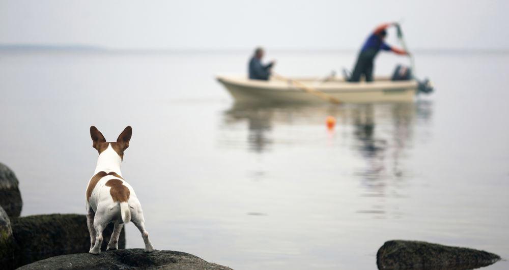 Морская рыбалка Финляндии